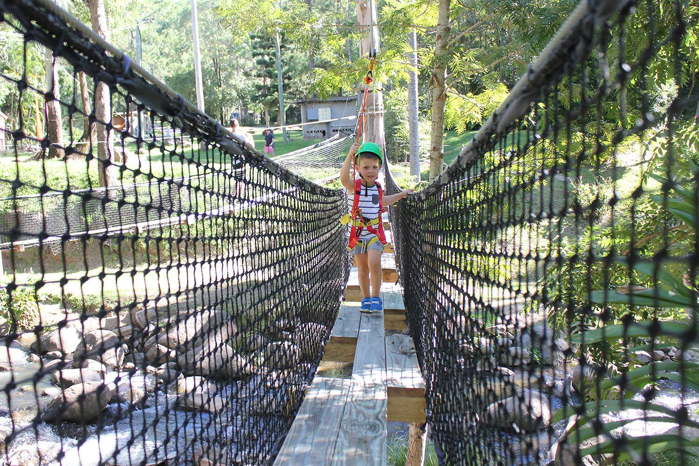 Tiny Tot's High Rope and Zipline Adventure, Tamborine Mountain - Child (aged 3-8)