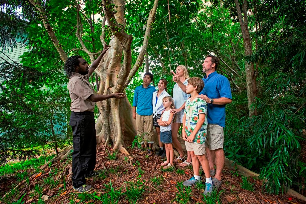 Tjapukai by Day - Aboriginal Cultural Tour, Cairns - Adult