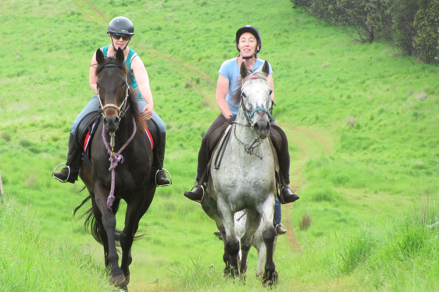 Kimberley Horse Riding, 2 Hours - Launceston, Tasmania