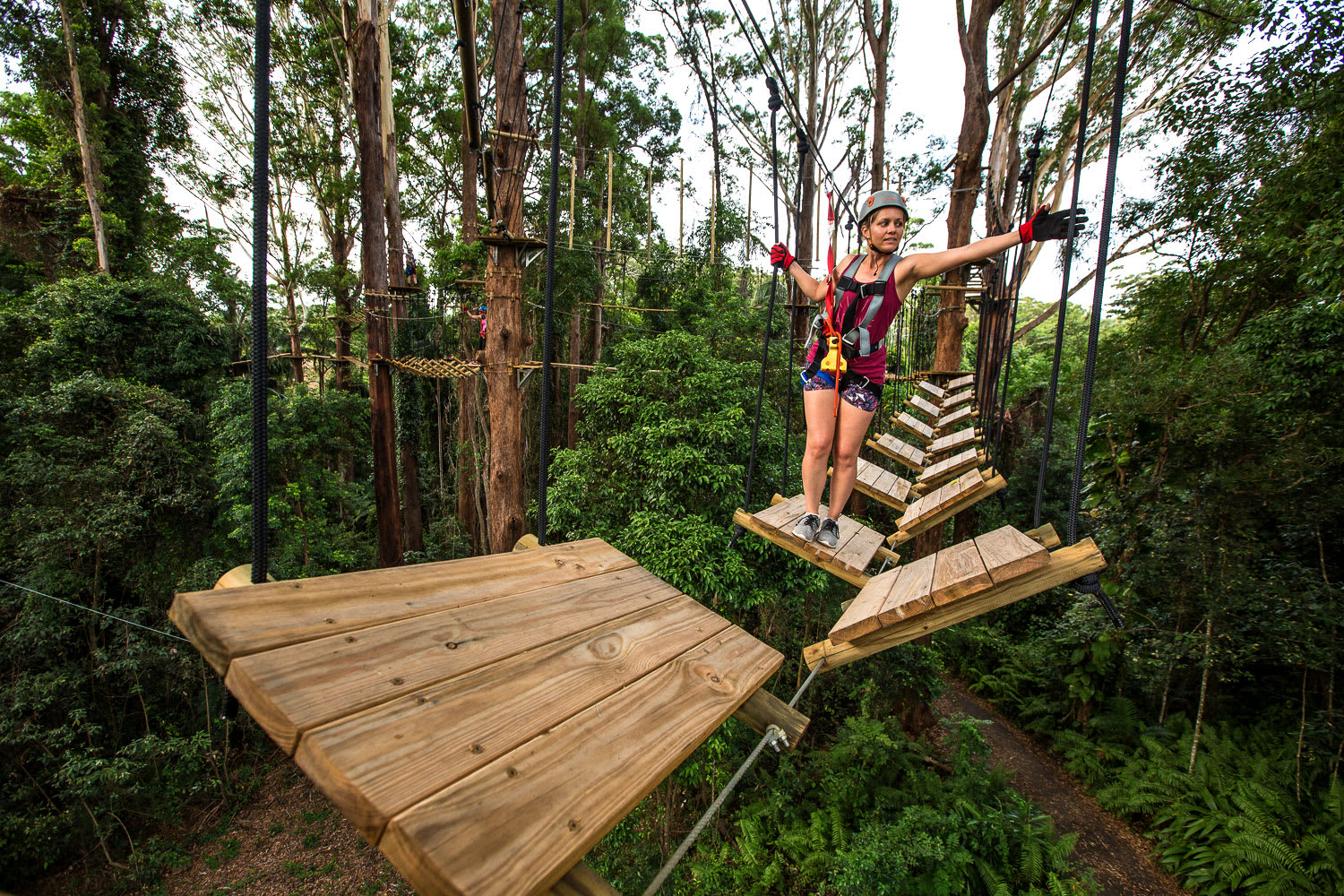 High Ropes & Flying Fox Adventure - Sunshine Coast