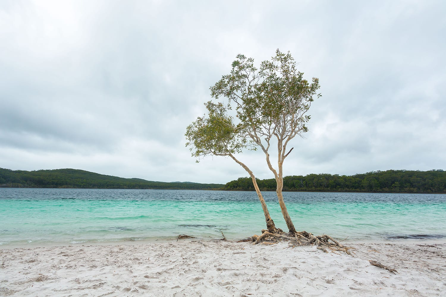 Off Road 4WD Adventure For 2 - Fraser Island