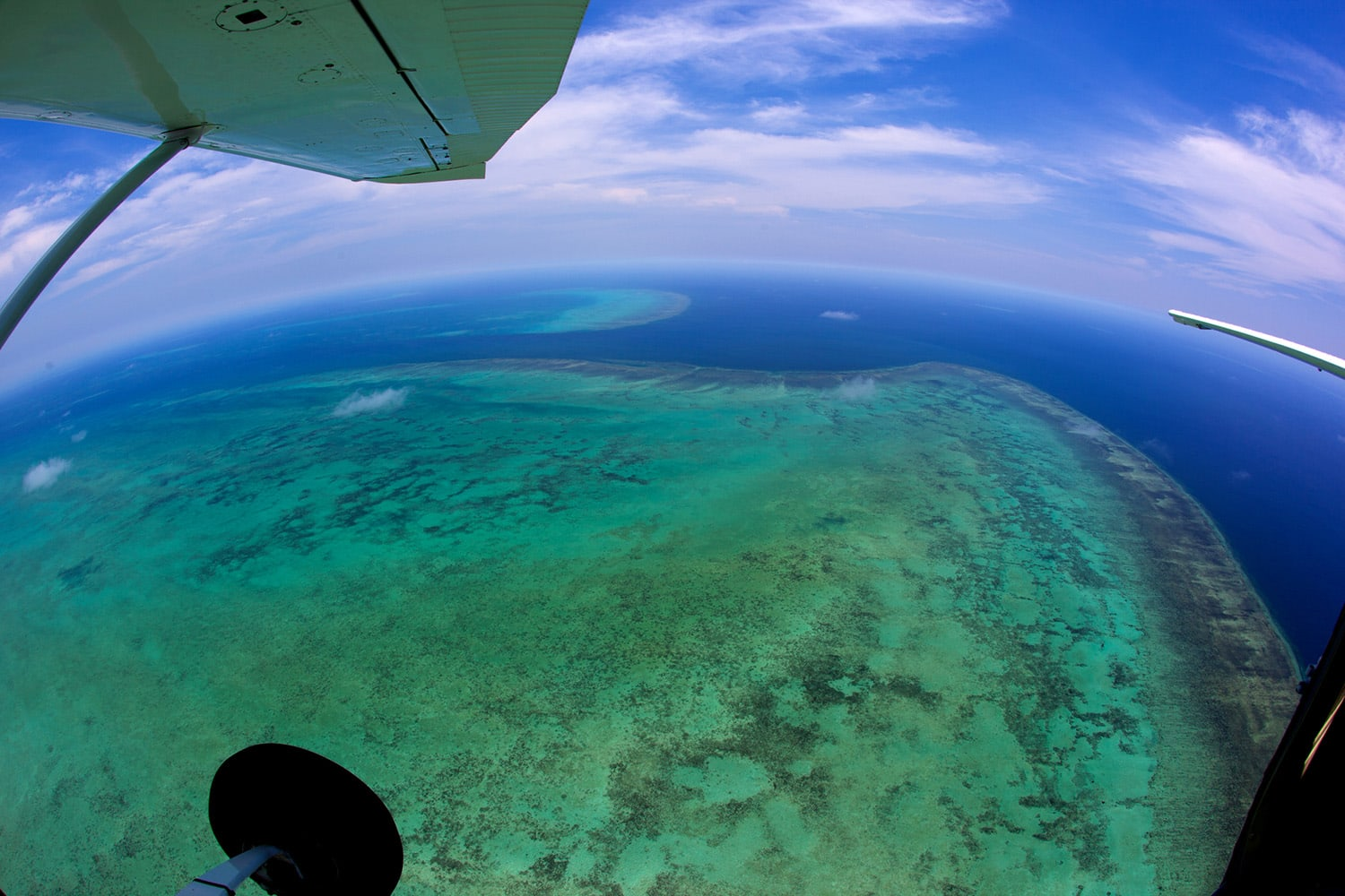 Scenic Flight Over Great Barrier Reef and Port Douglas, 1 Hour - Cairns