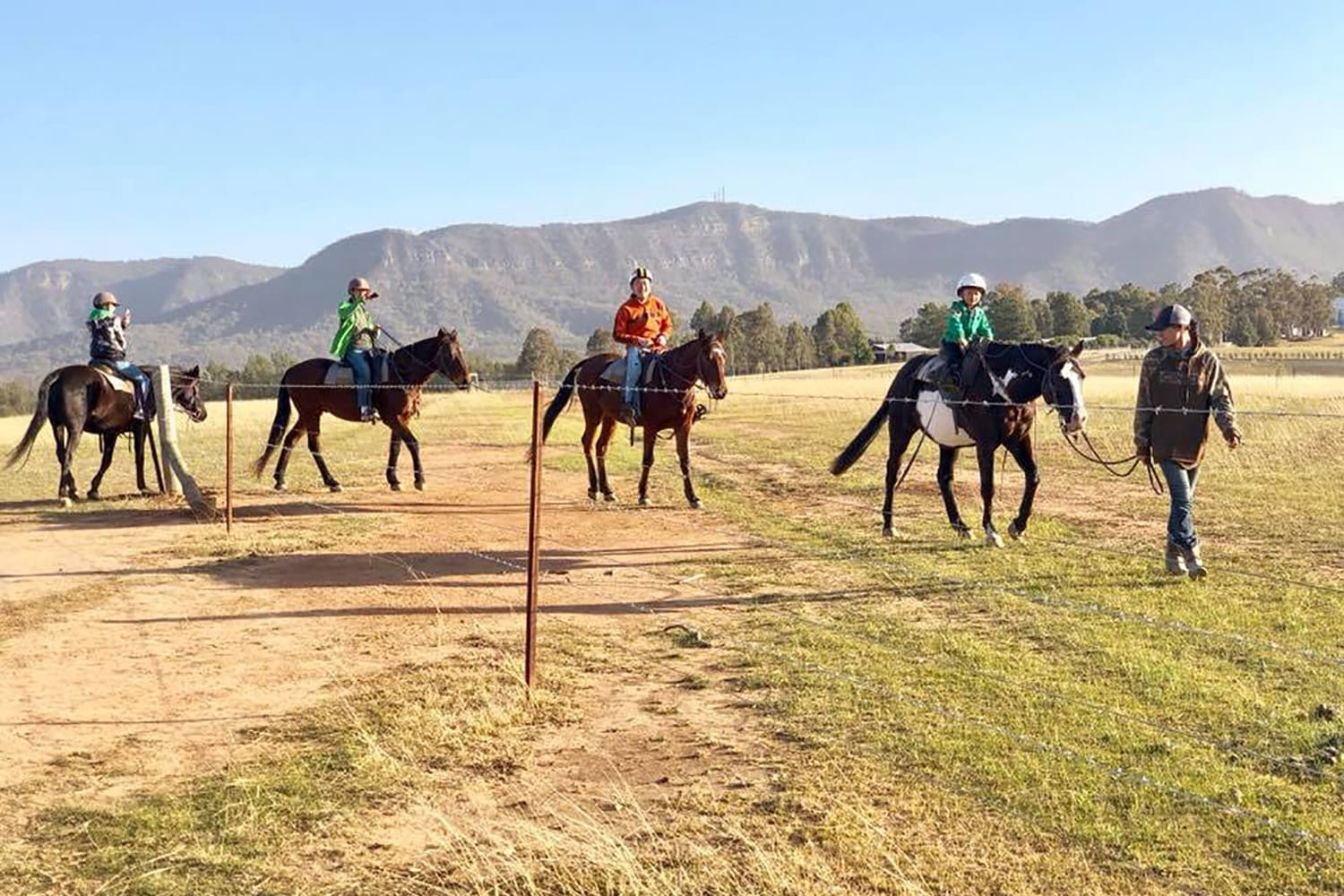 Horse Trail Ride, 1 Hour - Brokenback Range, Hunter Valley