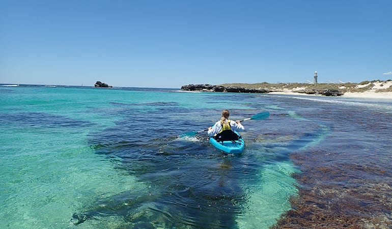 Guided Glass Bottom Kayak Tour - Rottnest Island