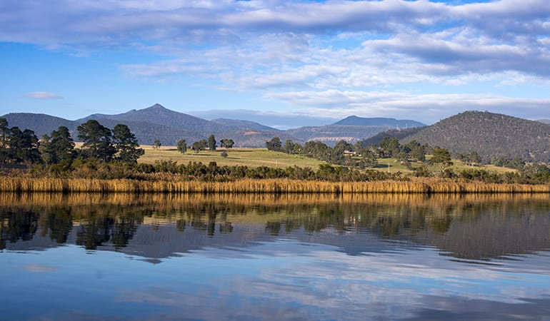 Afternoon Wine and Craft Beer Tour, 5.5 Hours - Derwent Valley