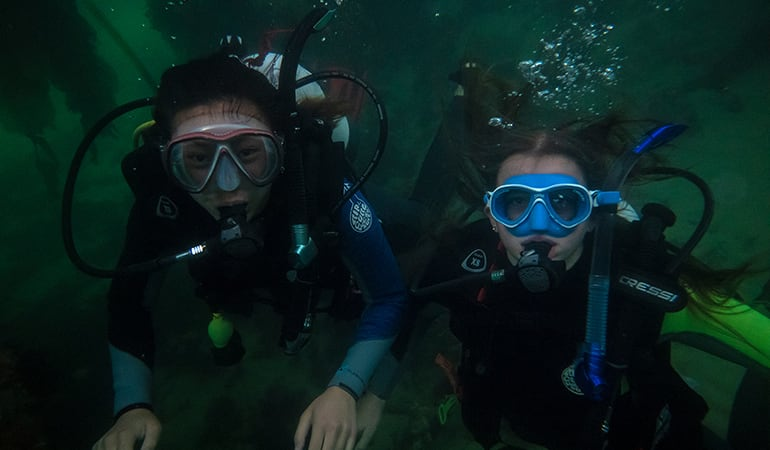 Discover Scuba Diving Phillip Island