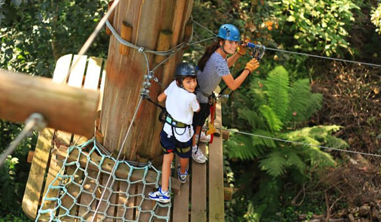 Tree Top Adventure Course With Zip-Lining - Nowra Park, NSW