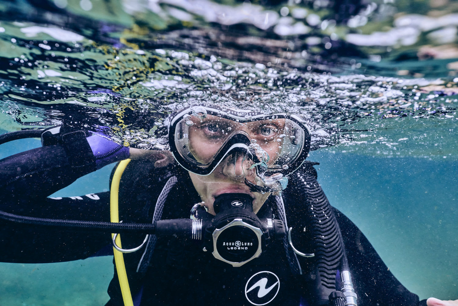 Introduction to Scuba Diving, Half Day - Sydney