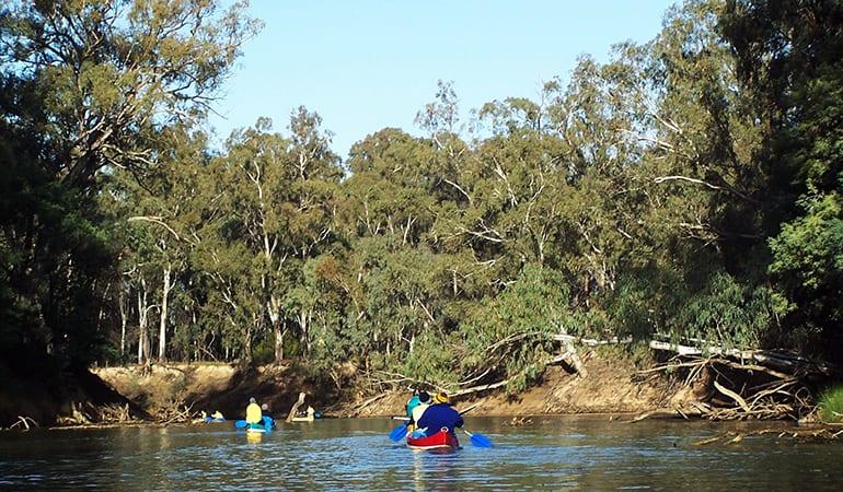 Goulburn River Kayak and Camping Trip, 3 Days, Includes Gear - Wyuna