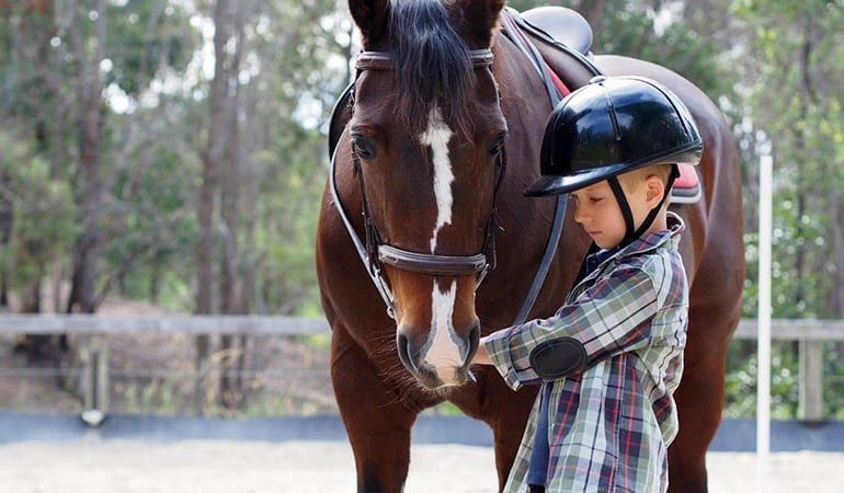 Horse Riding Lesson, 1 Hour (Extra Rider Goes Free) – Gold Coast