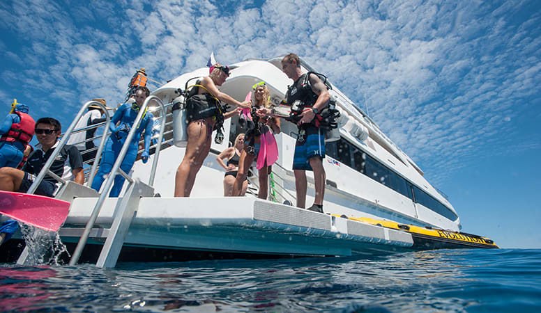 Great Barrier Reef Snorkelling and Intro Dive with Lunch, Full Day - Cairns