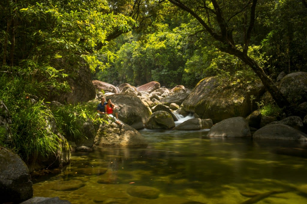 Cape Tribulation, Daintree and Mossman Gorge Guided Tour – departs Cairns