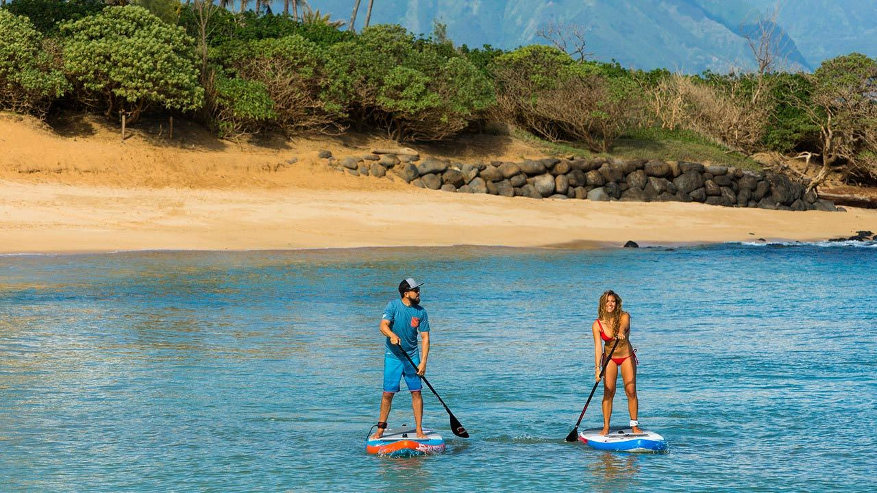 Stand Up Paddle Board Lesson, 1 Hour - Sunshine Coast