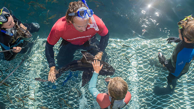 In-Sea Aquarium Swim with Transfers - Victor Harbor SA