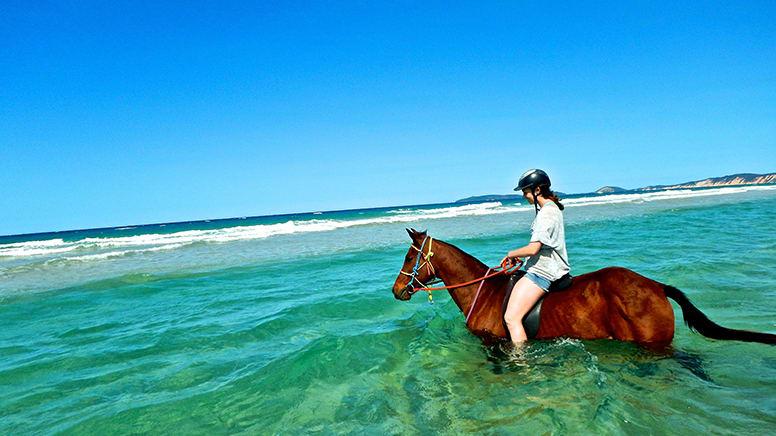 Bareback Ocean Horse Riding, Experience Needed - Rainbow Beach