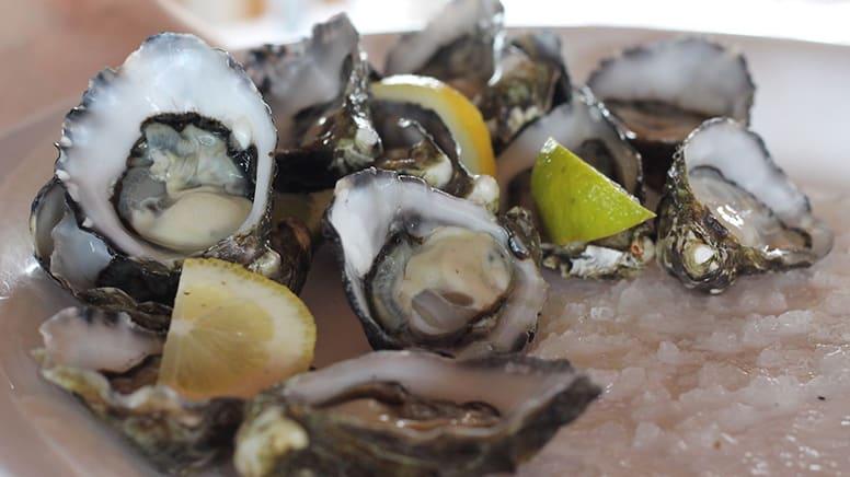 Sunday Seafood Brunch Cruise, Melbourne - Child