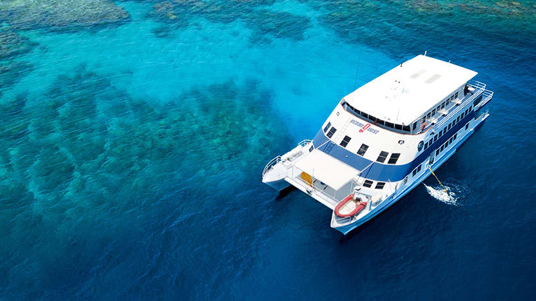 Minke Whale Snorkel Tour, 4 Nights - Great Barrier Reef, Departing Cairns