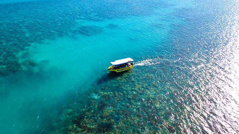 Glass Bottom Boat Tour, 70 Minutes - Airlie Beach