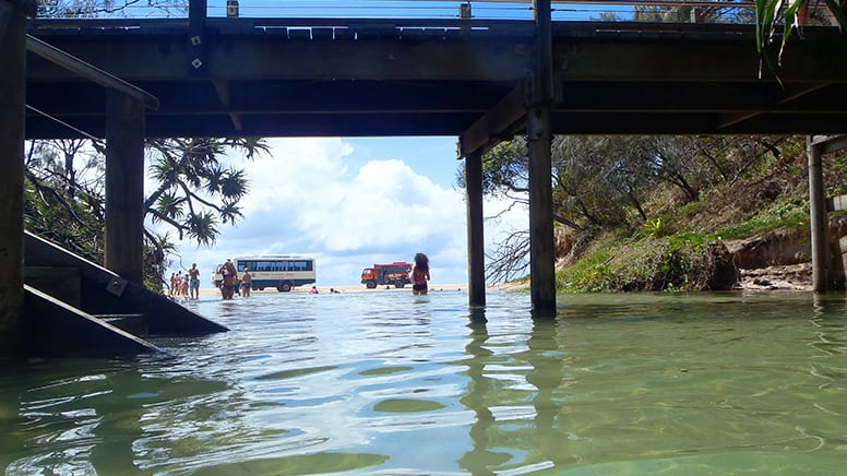 Fraser Island Explorer Tour with Lunch - Departs Hervey Bay, Queensland