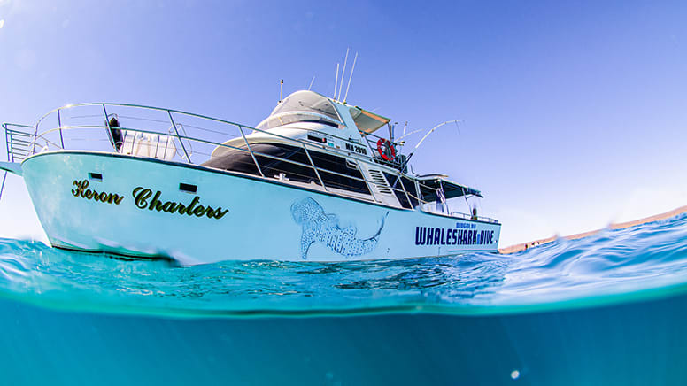 Whale Shark Observer Tour with Snorkelling – Ningaloo Reef, Exmouth