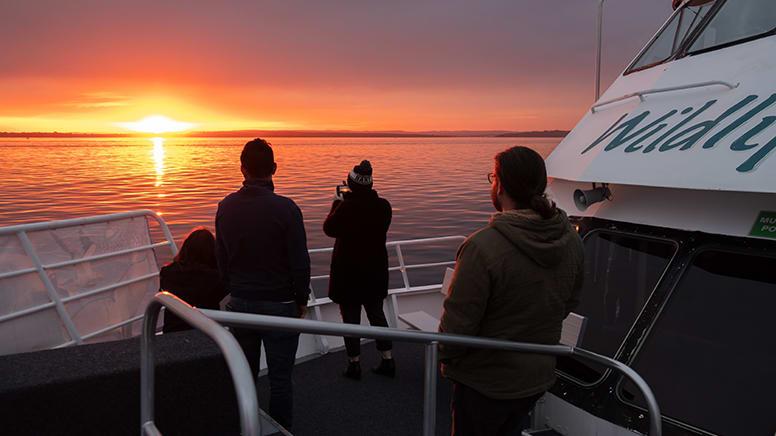 Twilight Bay Cruise - Phillip Island