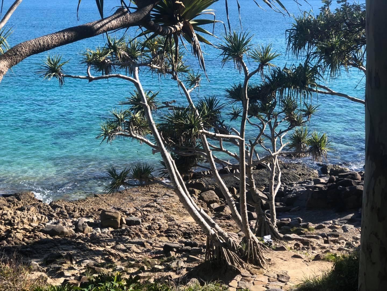 Sea Kayaking Tour, 2 Hours - Noosa