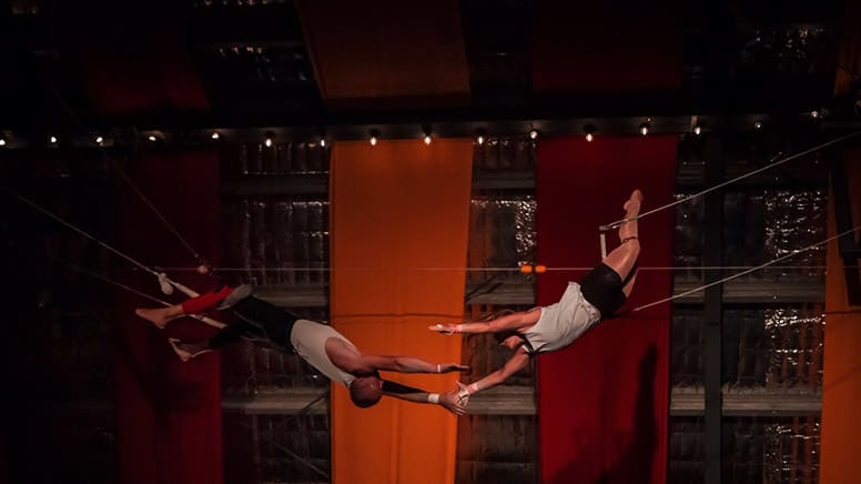 Flying Trapeze Workshop, 90 Minutes - Byron Bay