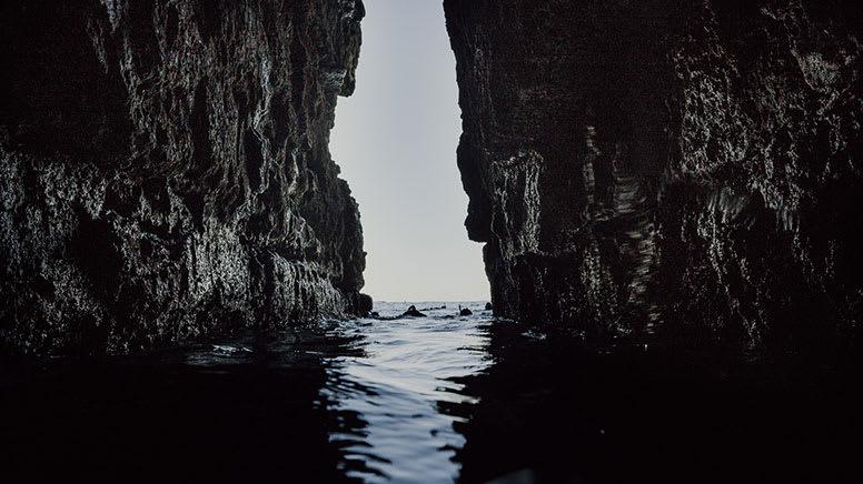 Snorkelling & Freediving Adventure, 5 Hours - Jervis Bay