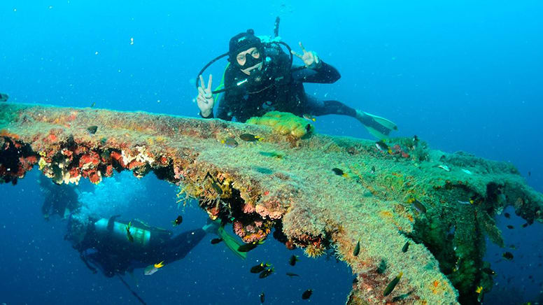 Certified Diver Tour of S.S. Yongala Wreck - Townsville to Great Barrier Reef