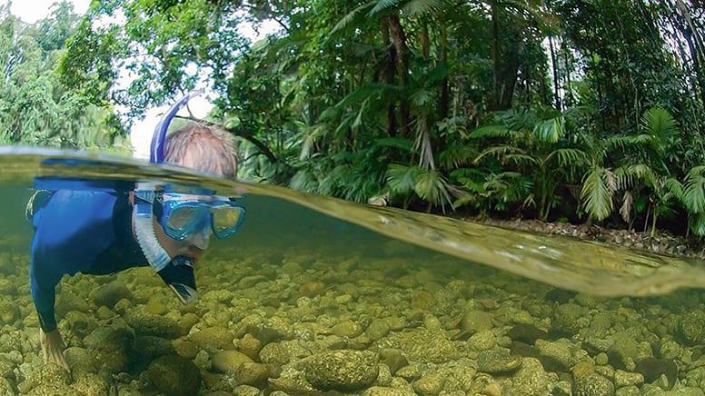 River Drift Snorkelling - Port Douglas