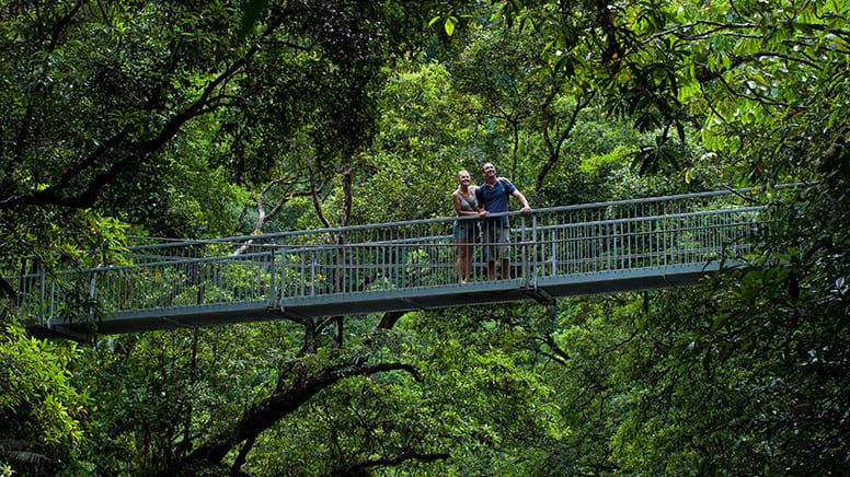 Mossman Gorge Rainforest Walk, 3.5 Hours - Port Douglas
