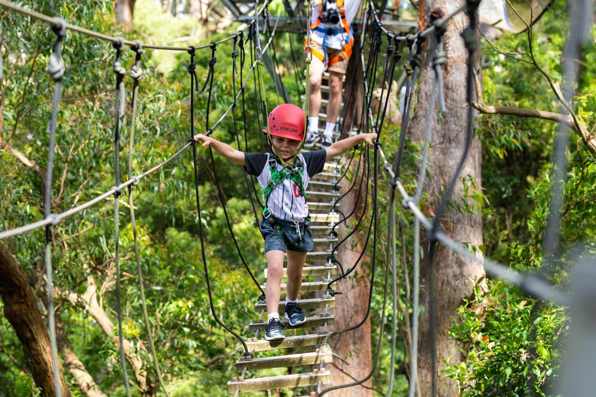 Illawarra Fly Treetop Zipline Adventure - Southern Highlands, NSW