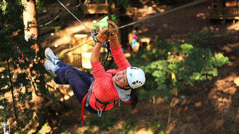 Treetop Ropes Course with Ziplining, Dwellingup WA