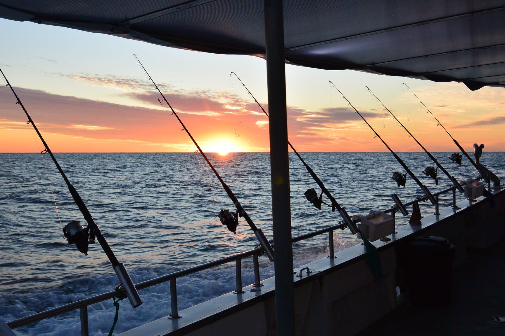 Deep Sea Fishing Trip, Full Day - Sunshine Coast