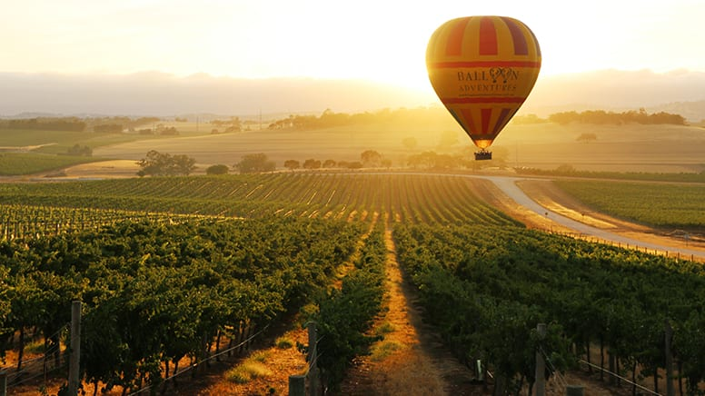 Hot Air Ballooning - Barossa Valley, Adelaide