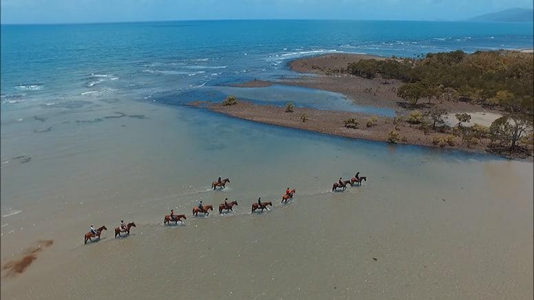 Beach Horse Riding Tour, Morning - Cape Tribulation