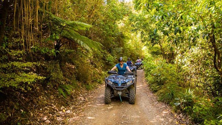 Farm & Forest Quad Bike Tour, 1.5 Hours - Nelson, NZ - For 2