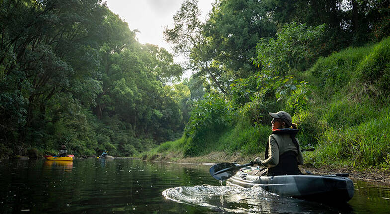 Private Rainforest Kayak Tour, 3 Hours - Byron Bay - For 2