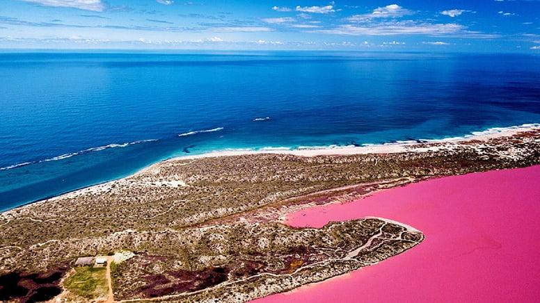Pink Lake Buggy Tour, 1 Hour - Hutt Lagoon, WA