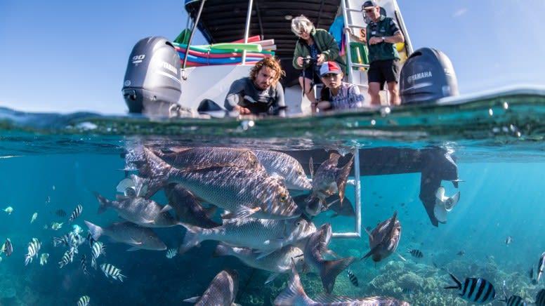 Glass Bottom Boat & Snorkel Tour, 2 Hours - Ningaloo Reef
