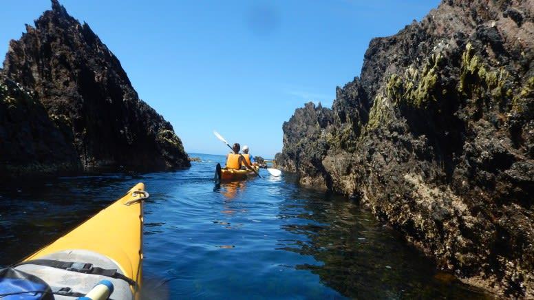 Half Day Kayak Tour - Batemans Bay Marine Park
