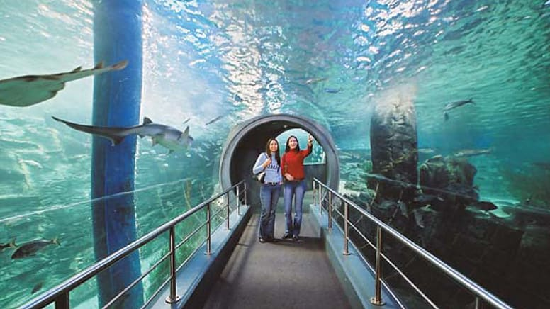 Melbourne Five Attractions Pass