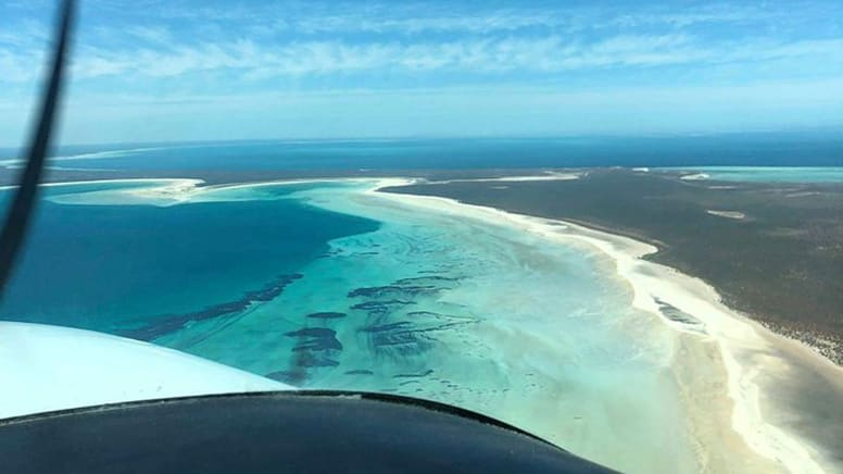 Scenic Flight & Shark Bay Dolphin Tour, Full Day – Perth - For 2