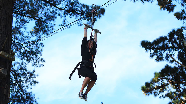 Forest High Ropes and Ziplining Adventure - Wellington