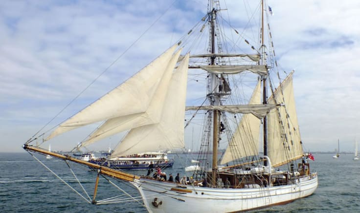 Tall Ship Cruise with Laser-Clay Shooting & Mast Climb - Sydney Harbour