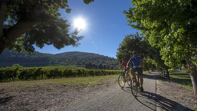 3 Day Cycling Trip - Beechworth to Bright, Victorian High Country