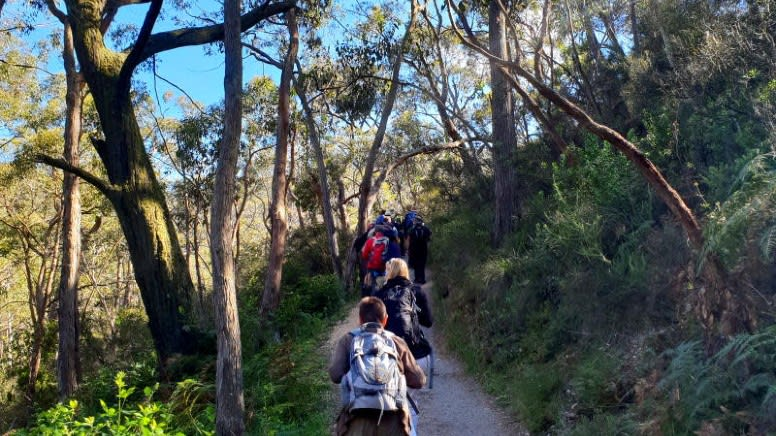 Mount Lofty Self-Guided Hike, 3 Hours - Departs Adelaide