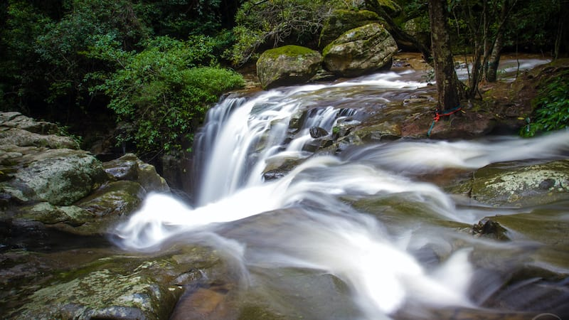 Private Rainforest Canyoning & Abseiling Adventure - Shellharbour - For 2