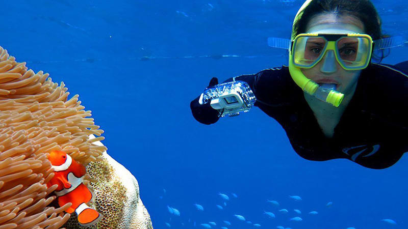 Great Barrier Reef Quicksilver Full Day Cruise Tour - Port Douglas