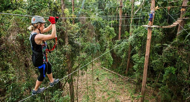 Ziplining and Flying foxes